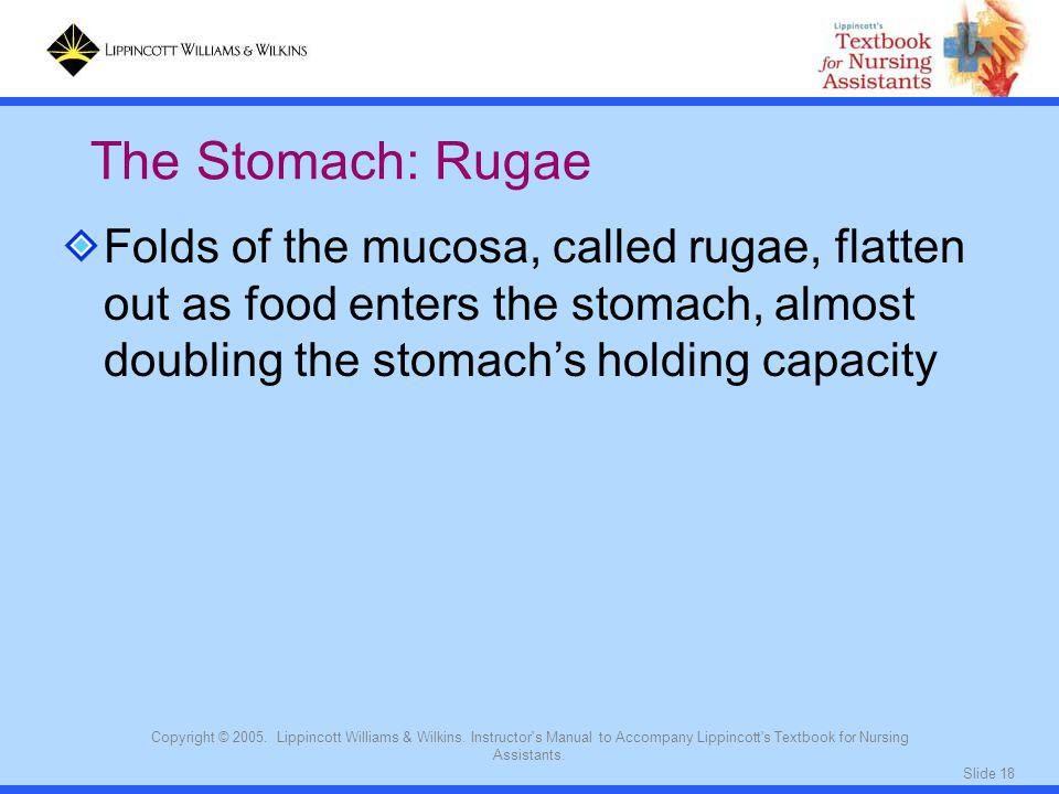 The Stomach: Rugae Folds of the mucosa, called rugae, flatten out as food enters the stomach, almost doubling the stomach's holding capacity.