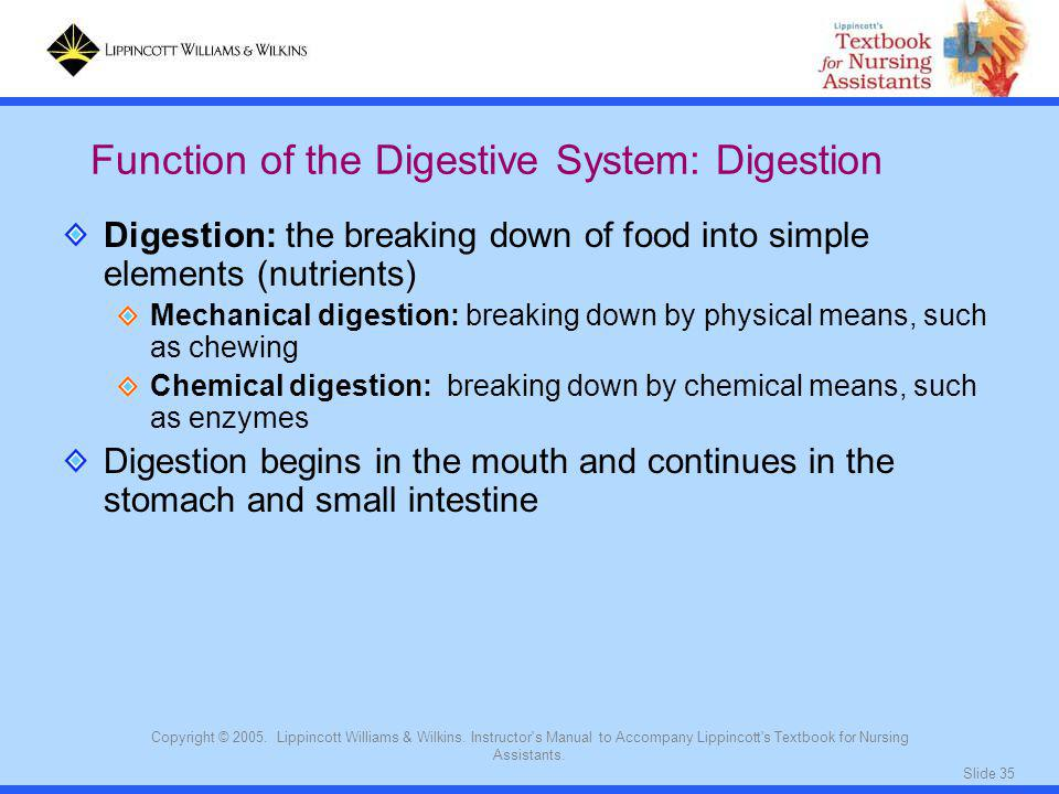 Function of the Digestive System: Digestion