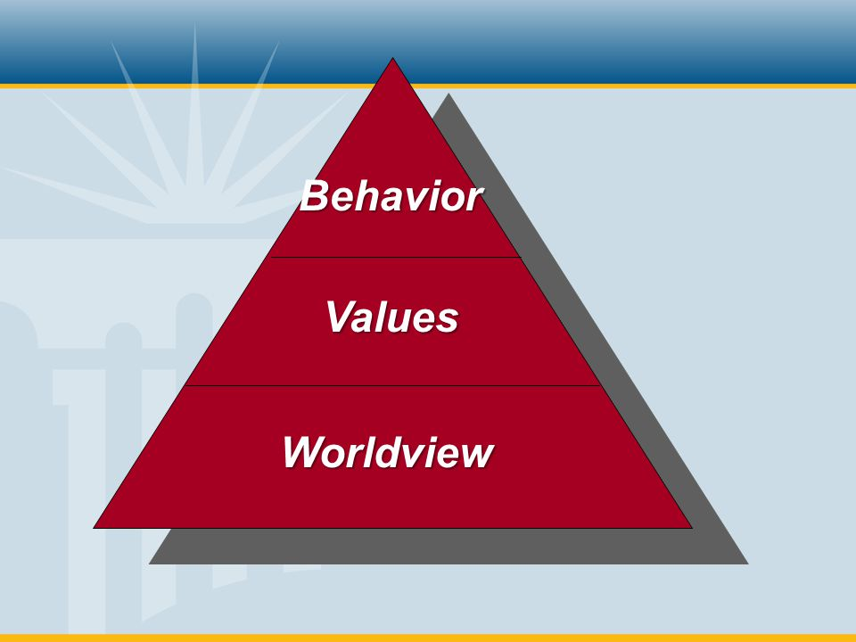 Behavior Values Worldview