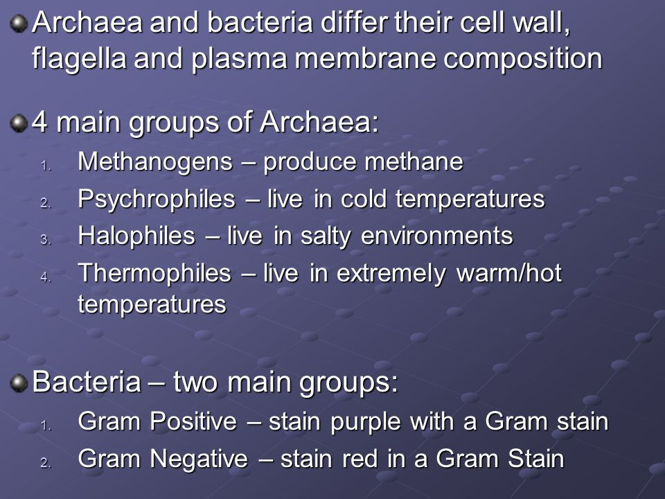 4 main groups of Archaea: