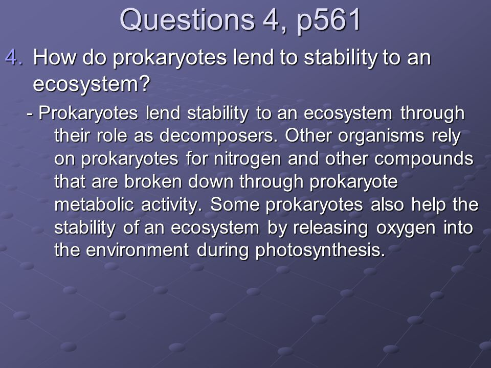 Questions 4, p561 How do prokaryotes lend to stability to an ecosystem