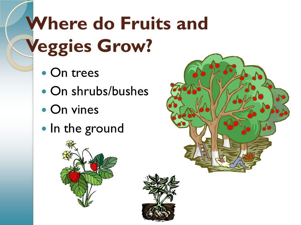 Where do Fruits and Veggies Grow