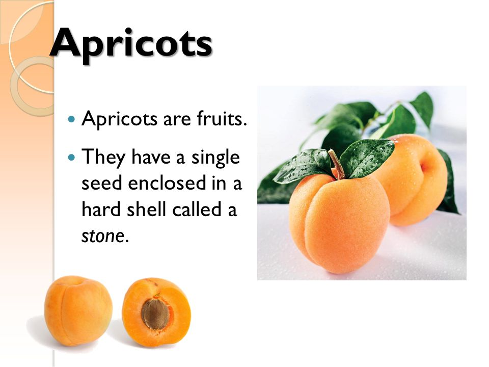 Apricots Apricots are fruits.