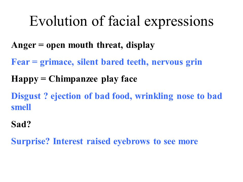 Evolution of facial expressions
