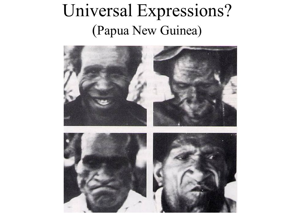 Universal Expressions (Papua New Guinea)