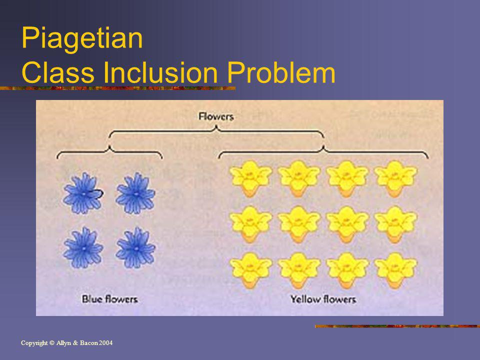 Piagetian Class Inclusion Problem