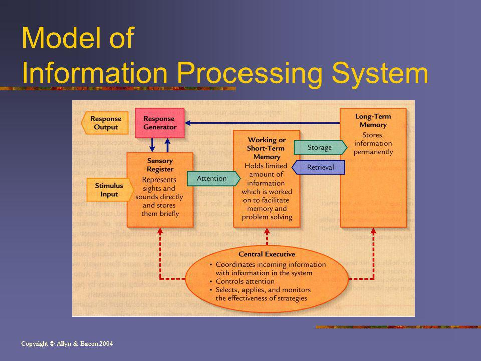Model of Information Processing System