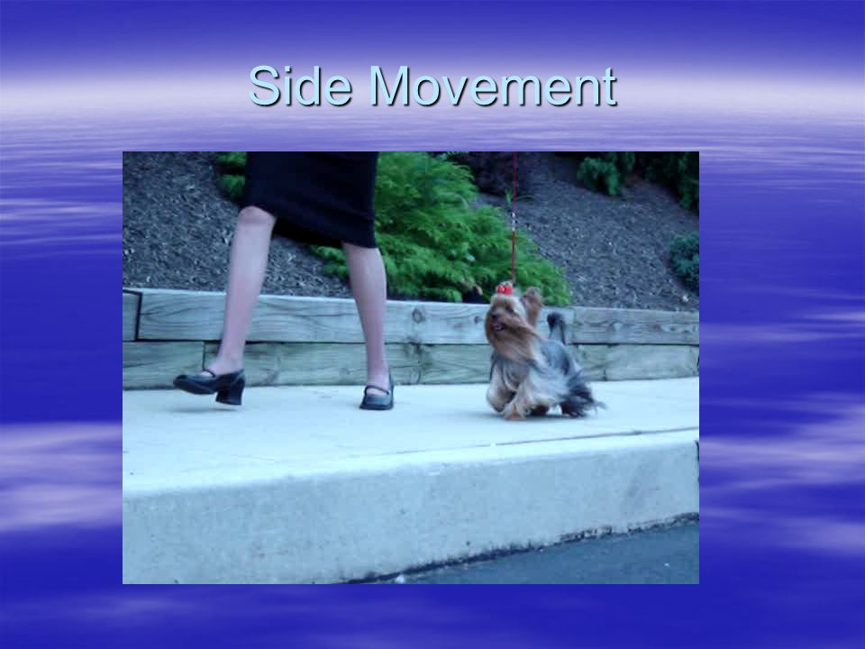 Side Movement
