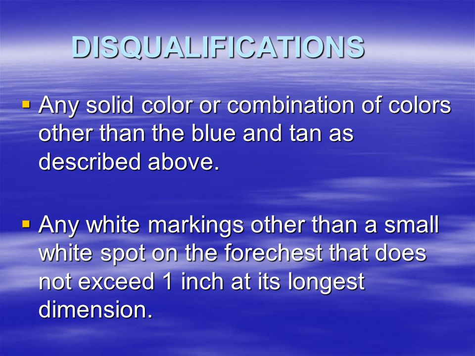 DISQUALIFICATIONS Any solid color or combination of colors other than the blue and tan as described above.