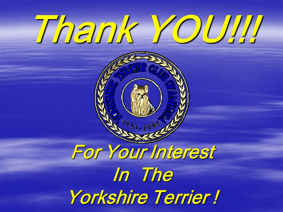Thank YOU!!! For Your Interest In The Yorkshire Terrier !