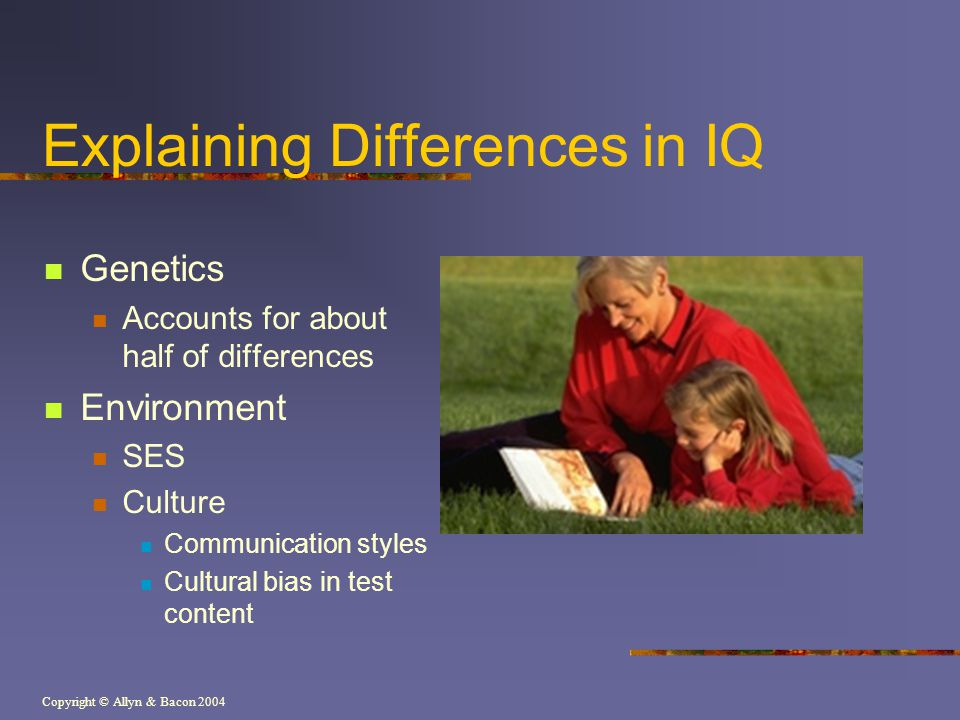 Explaining Differences in IQ