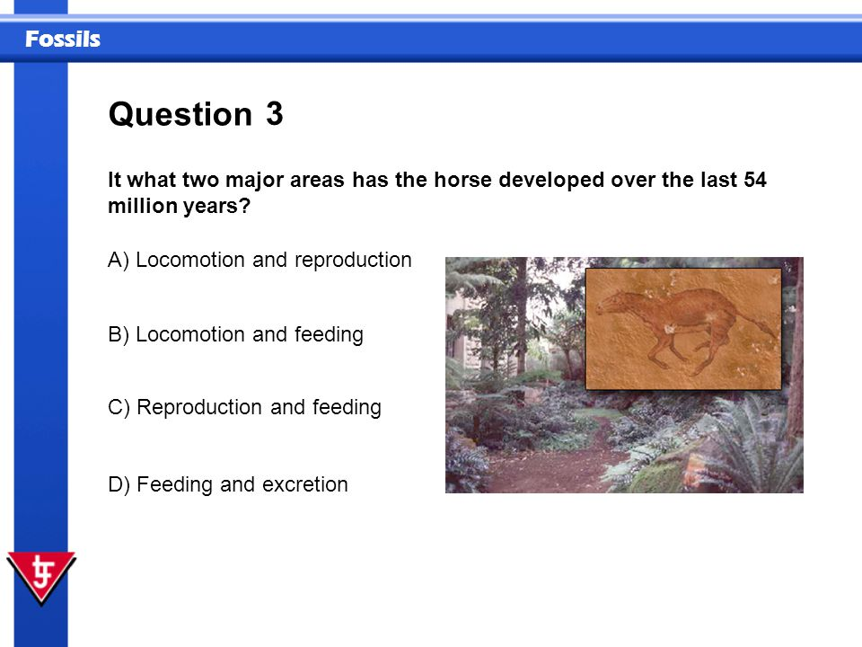 Question 3. It what two major areas has the horse developed over the last 54 million years A) Locomotion and reproduction.
