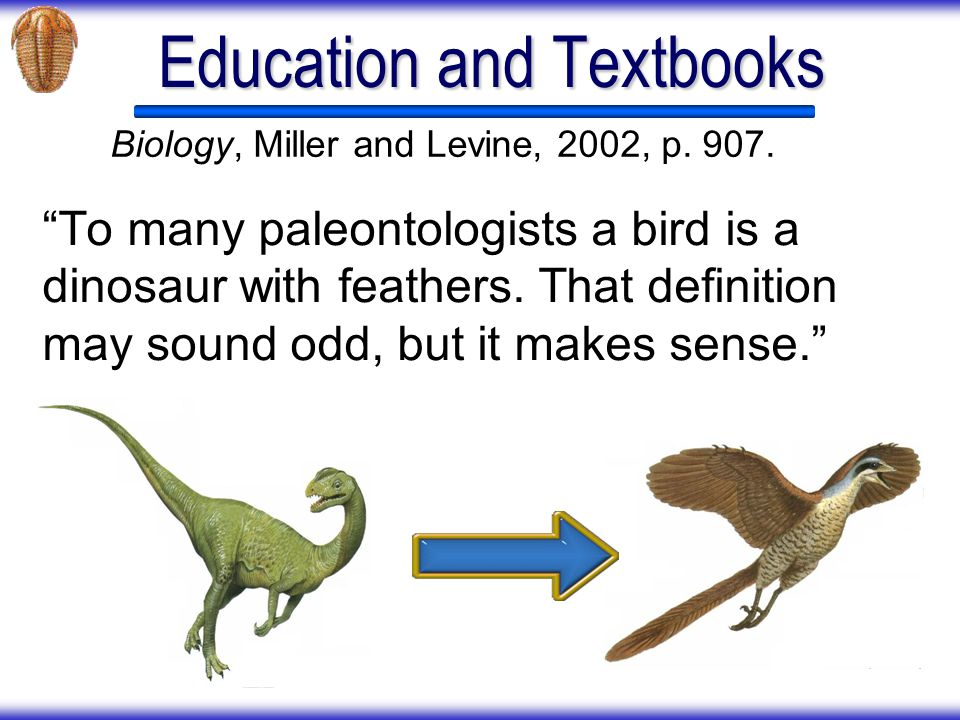 Education and Textbooks