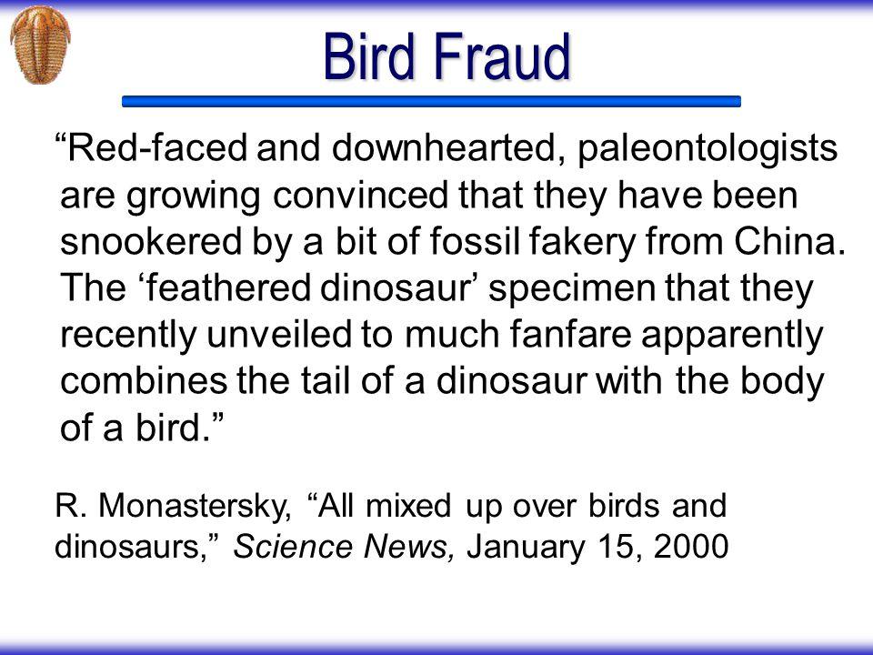 Bird Fraud