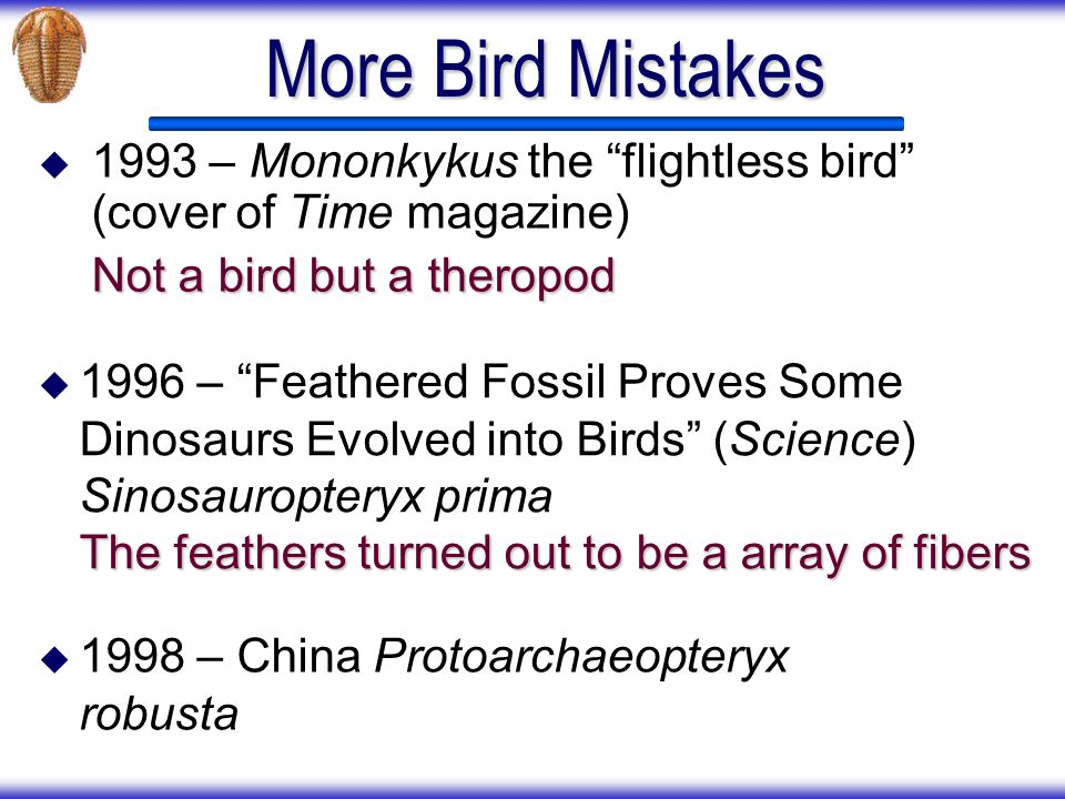 More Bird Mistakes 1993 – Mononkykus the flightless bird (cover of Time magazine) Not a bird but a theropod.