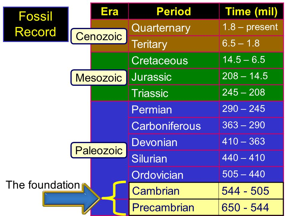Fossil Record Era Period Time (mil) Quarternary Teritary Cretaceous