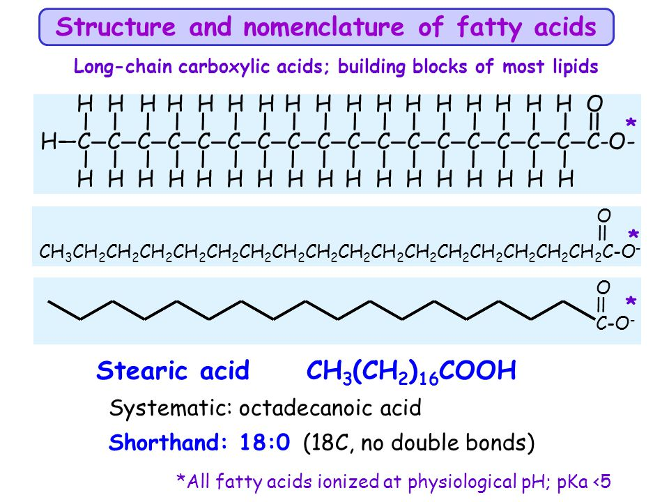 Structure and nomenclature of fatty acids