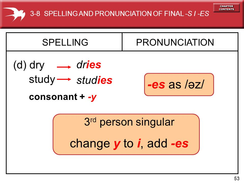 -es as /əz/ change y to i, add -es (d) dry dries study studies