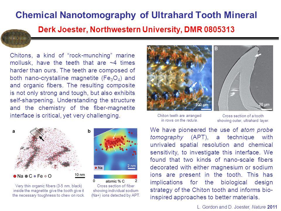 Chemical Nanotomography of Ultrahard Tooth Mineral Derk Joester, Northwestern University, DMR 0805313