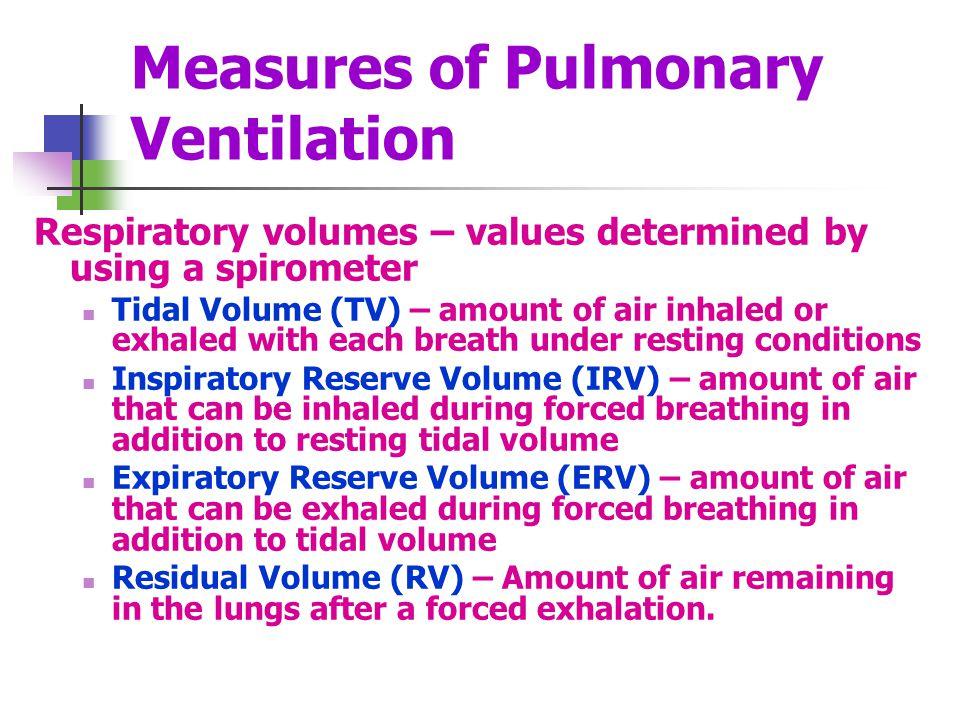 Measures of Pulmonary Ventilation