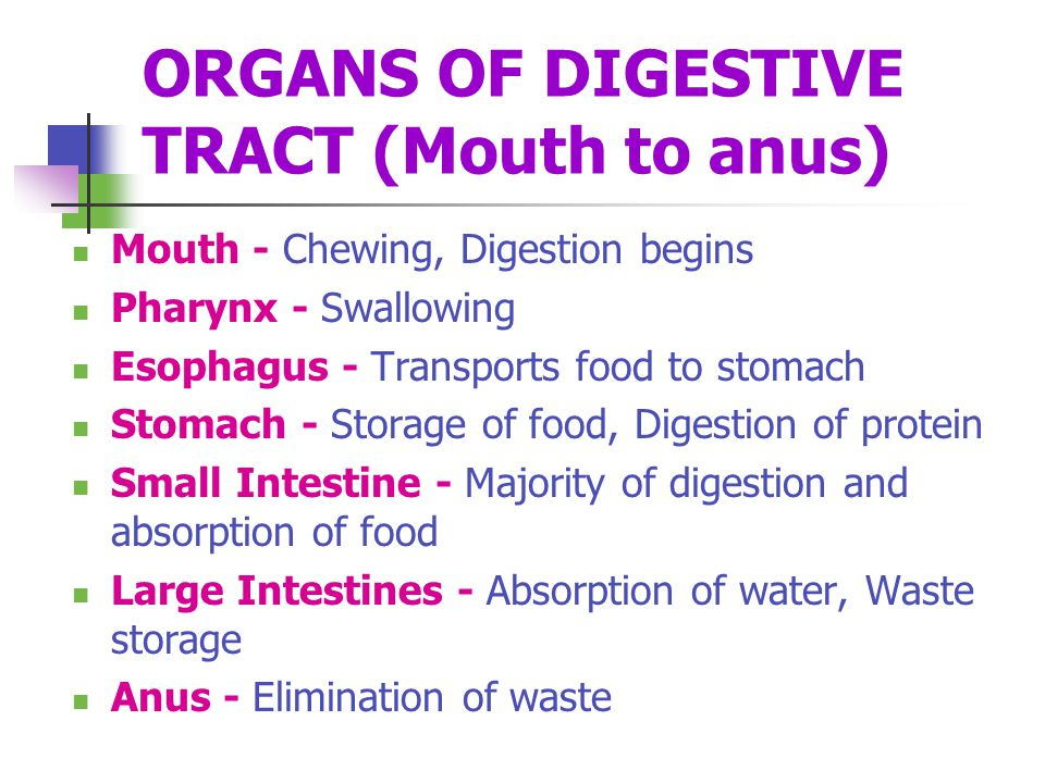 ORGANS OF DIGESTIVE TRACT (Mouth to anus)