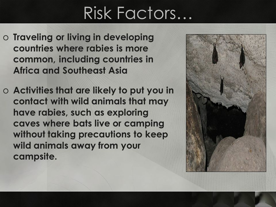 Risk Factors… Traveling or living in developing countries where rabies is more common, including countries in Africa and Southeast Asia.