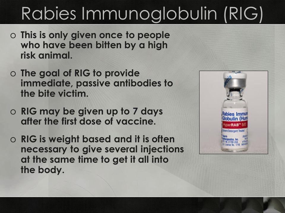 Rabies Immunoglobulin (RIG)