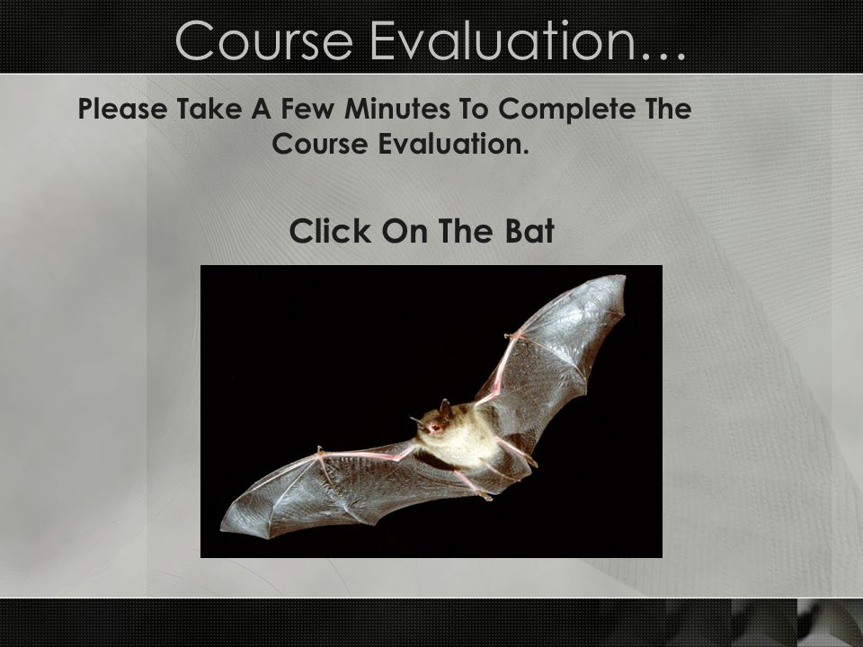 Please Take A Few Minutes To Complete The Course Evaluation.