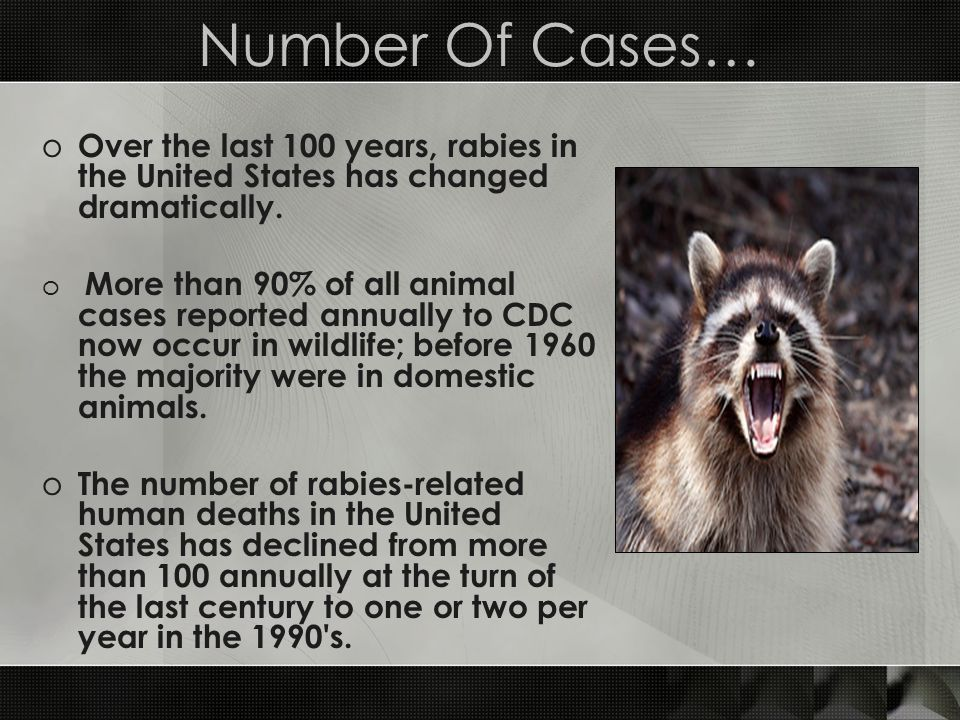 Number Of Cases… Over the last 100 years, rabies in the United States has changed dramatically.