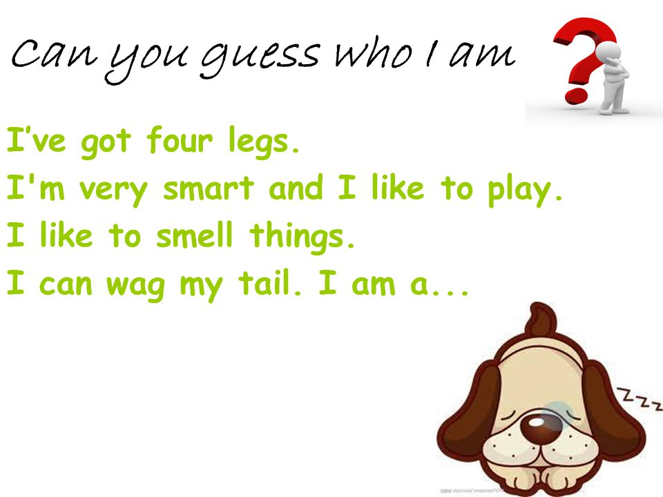 Can you guess who I am I've got four legs.