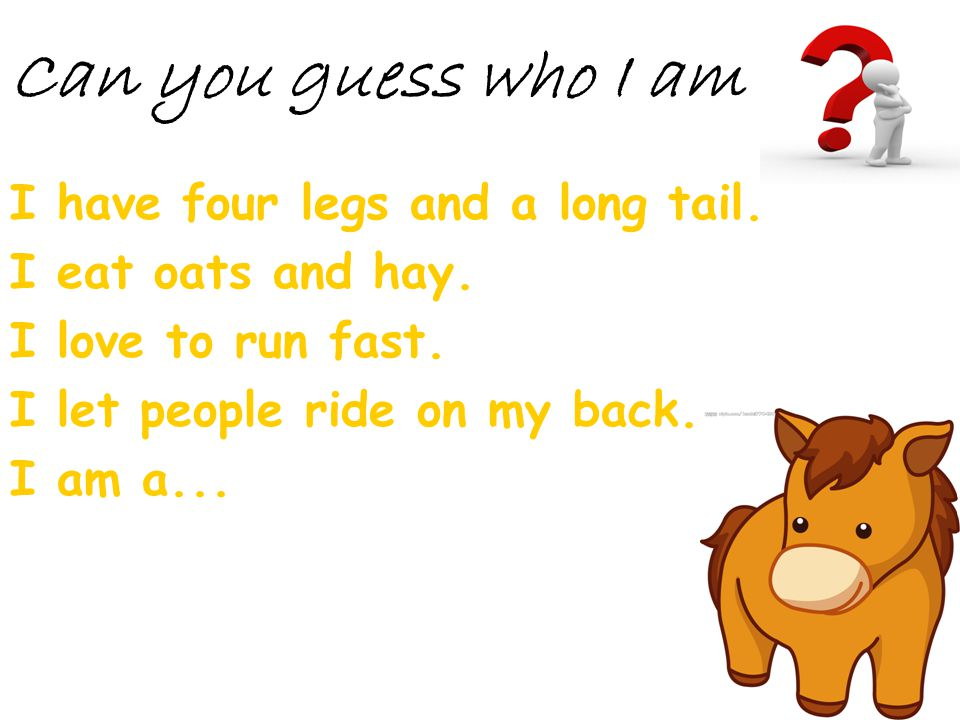 Can you guess who I am I have four legs and a long tail.