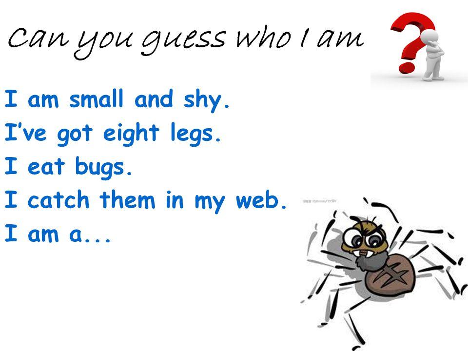 Can you guess who I am I am small and shy. I've got eight legs.