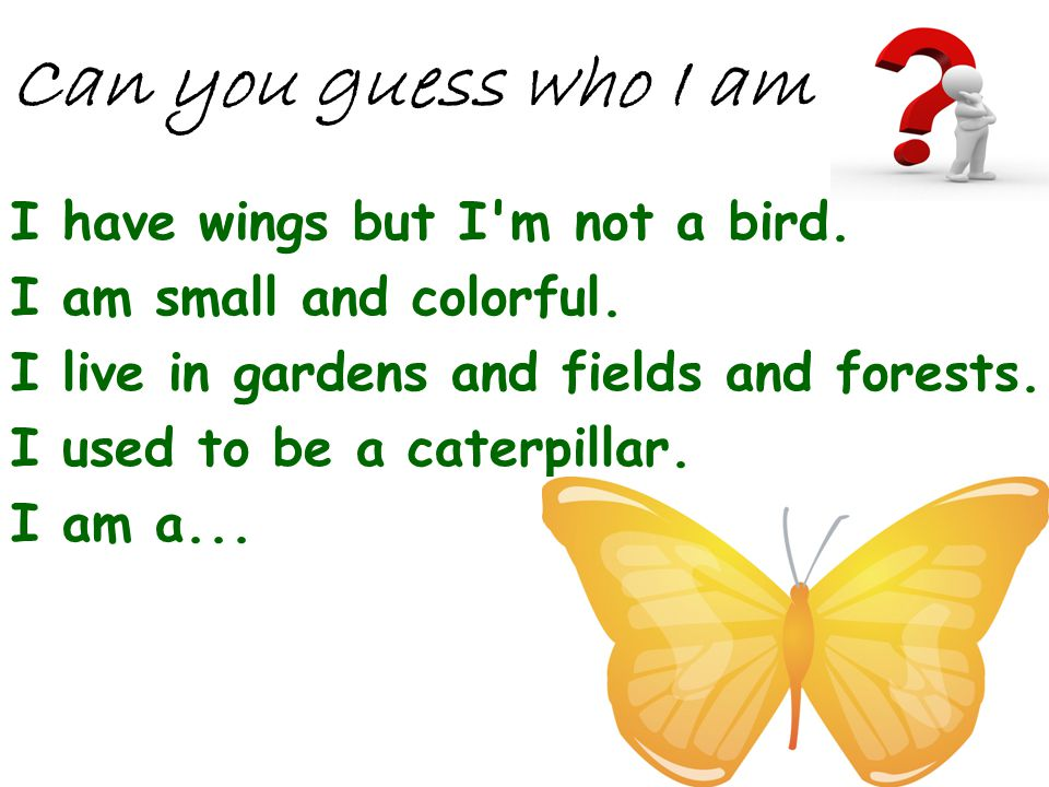 Can you guess who I am I have wings but I m not a bird.