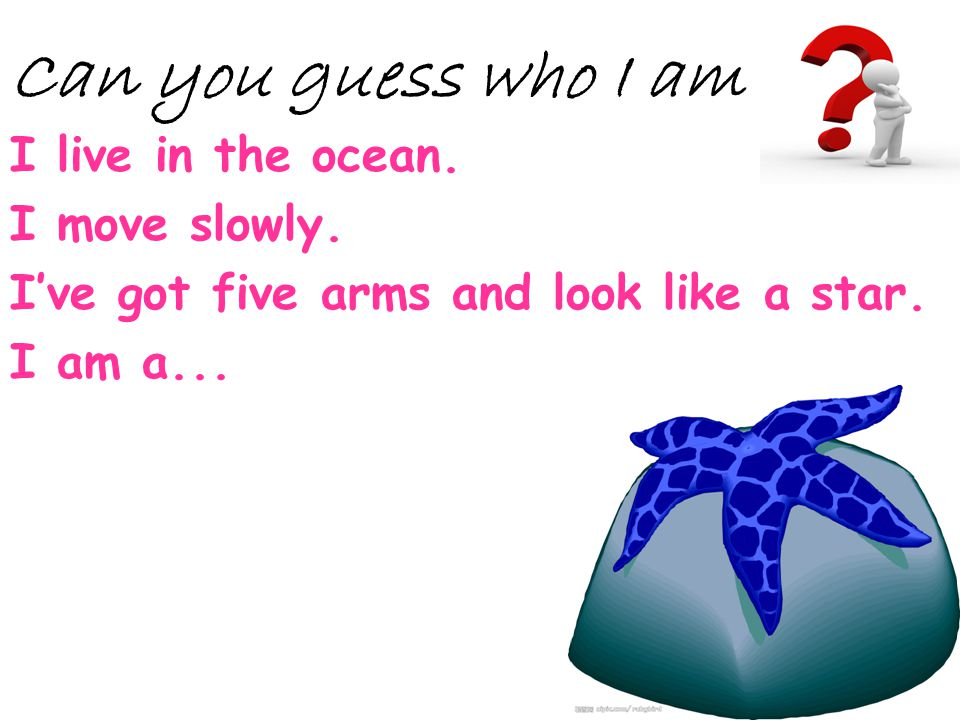 Can you guess who I am I live in the ocean. I move slowly.