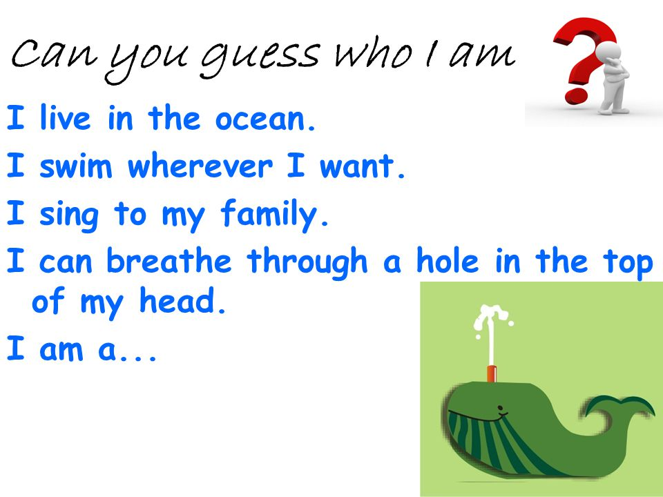 Can you guess who I am I live in the ocean. I swim wherever I want.