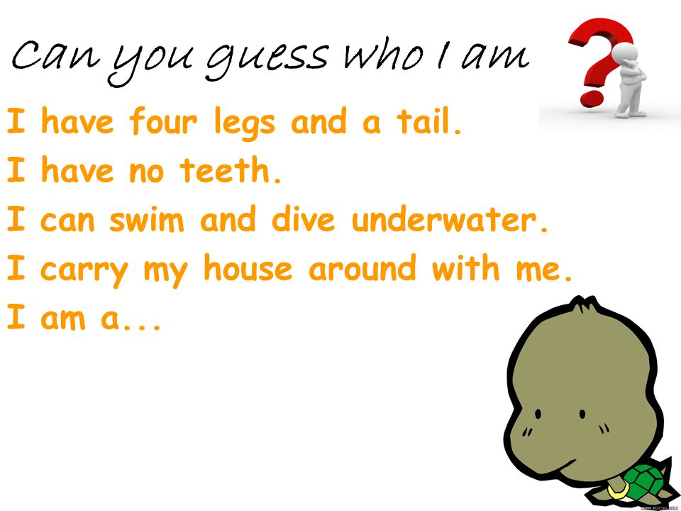Can you guess who I am I have four legs and a tail. I have no teeth.