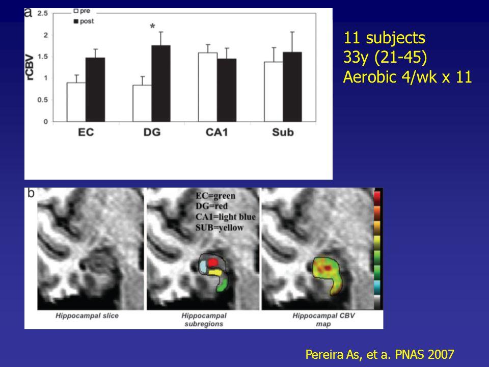 11 subjects 33y (21-45) Aerobic 4/wk x 11 Pereira As, et a. PNAS 2007