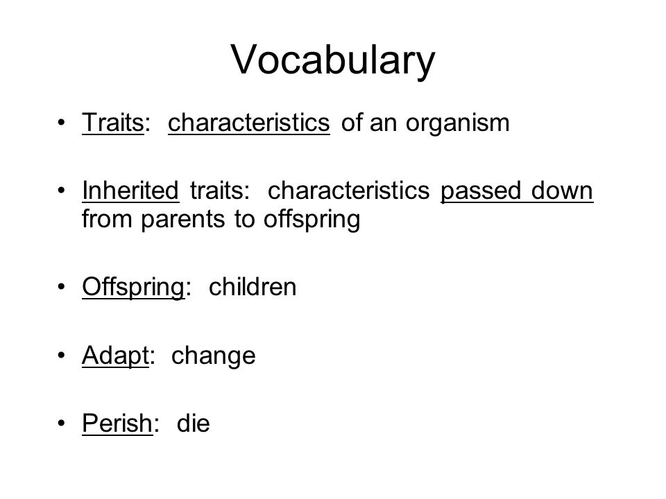 Vocabulary Traits: characteristics of an organism