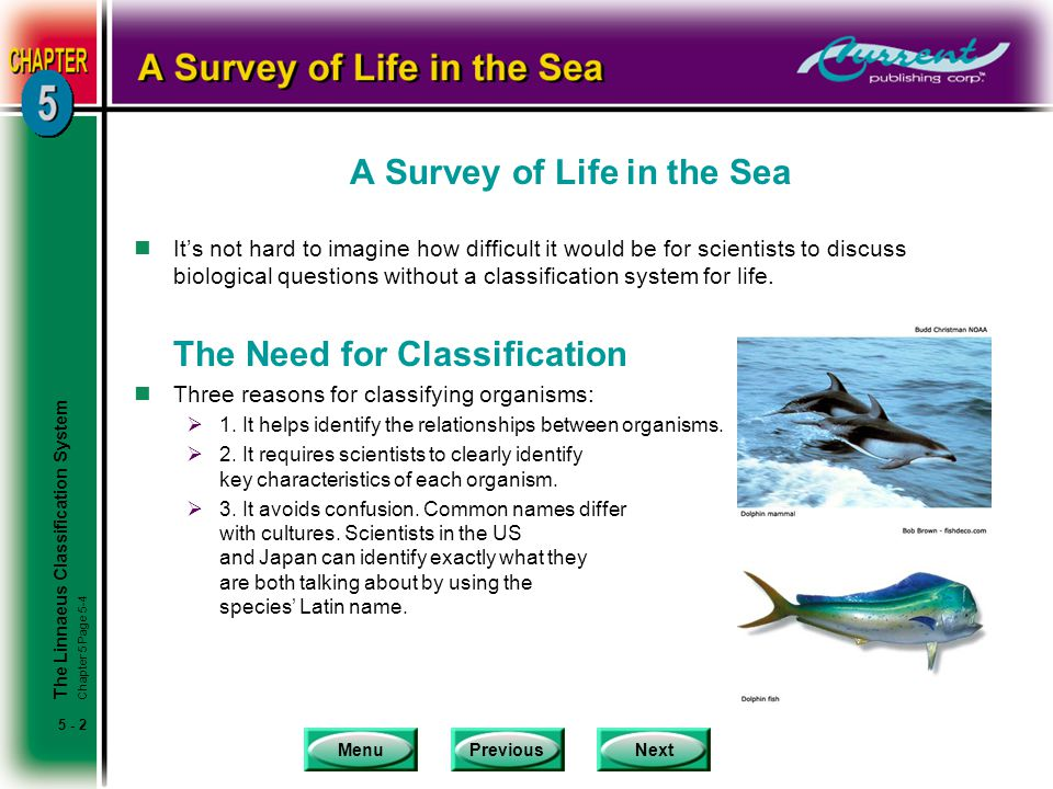 A Survey of Life in the Sea