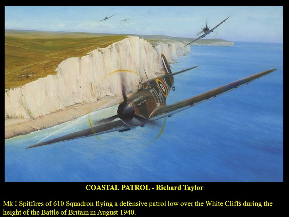COASTAL PATROL - Richard Taylor