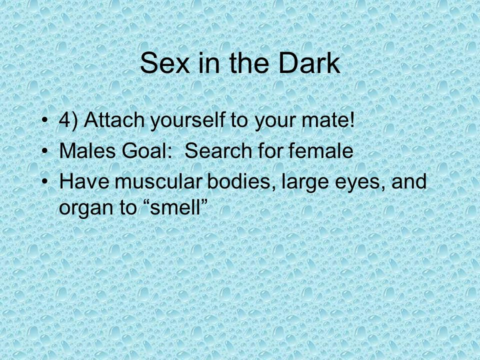 Sex in the Dark 4) Attach yourself to your mate!