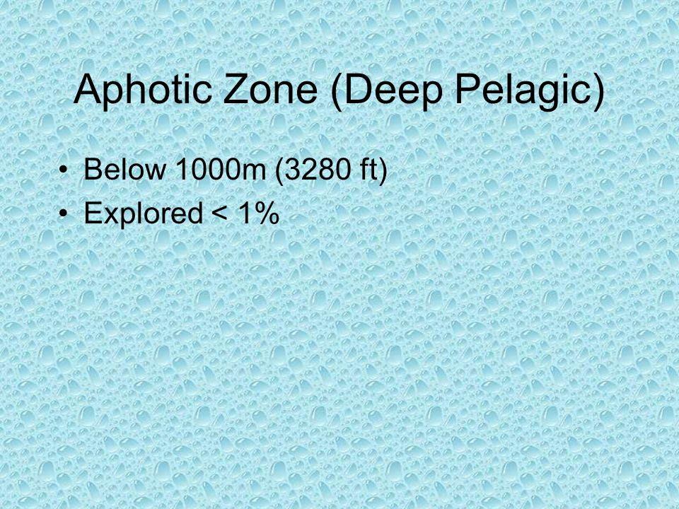 Aphotic Zone (Deep Pelagic)
