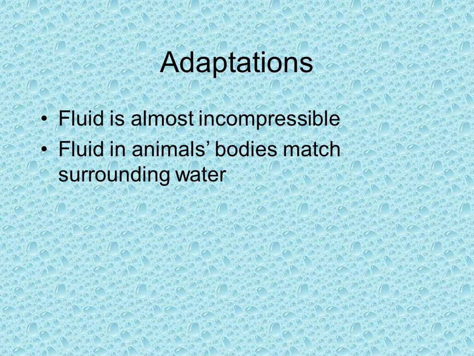 Adaptations Fluid is almost incompressible