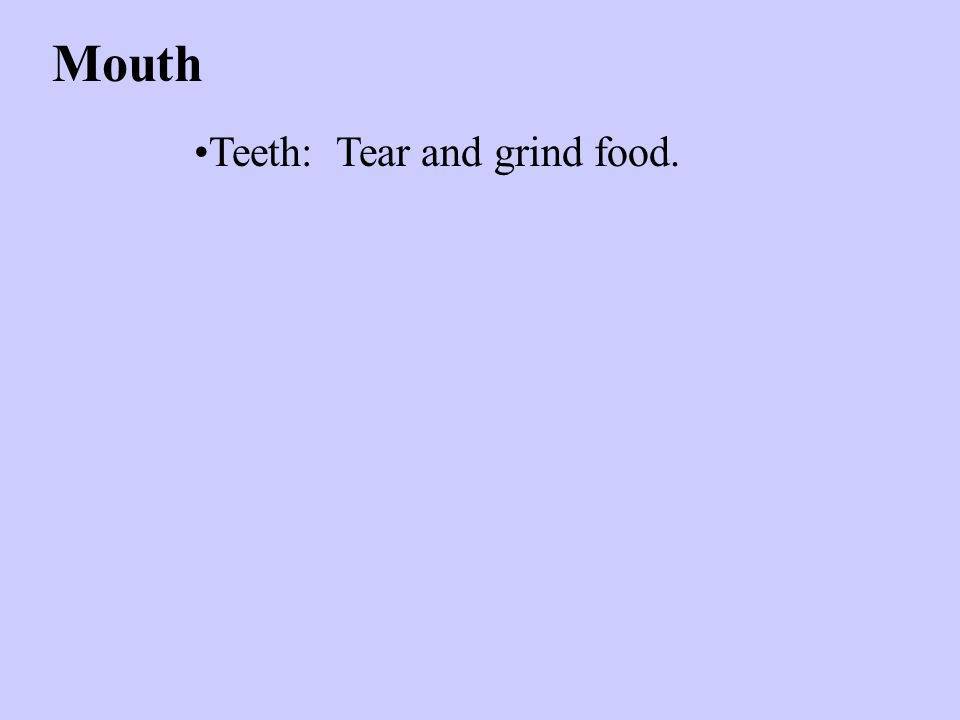 Mouth Teeth: Tear and grind food.