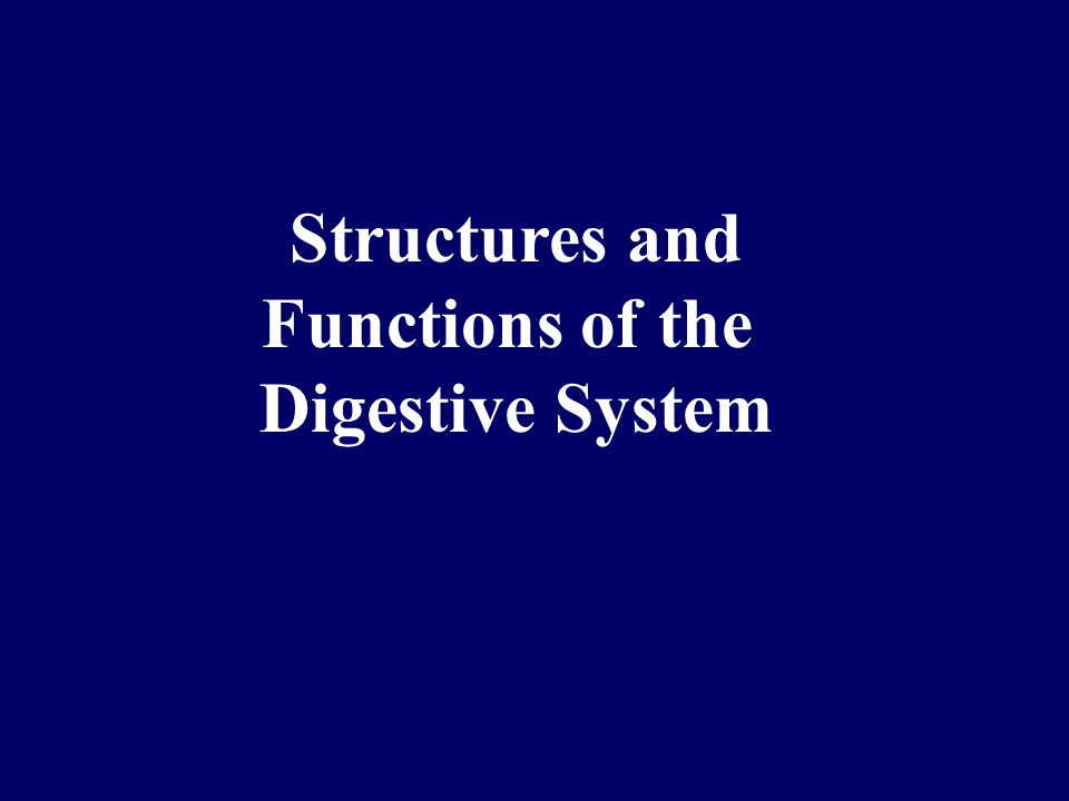 Structures and Functions of the Digestive System