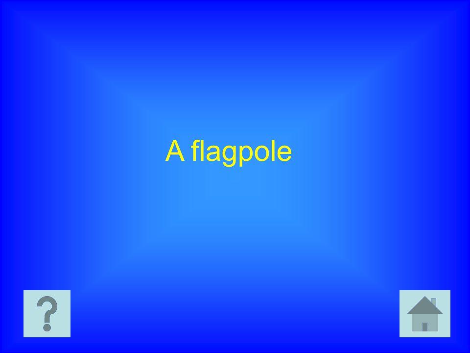 A flagpole