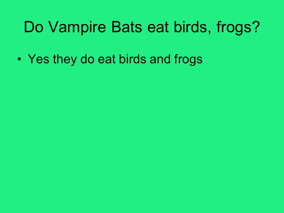 Do Vampire Bats eat birds, frogs