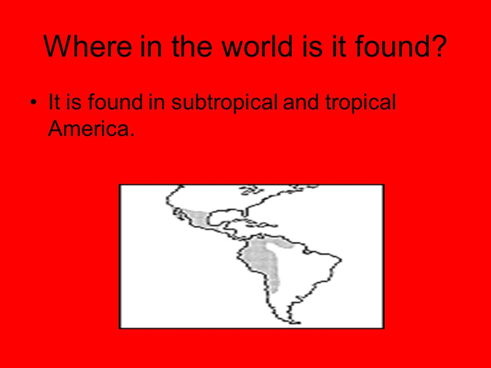 Where in the world is it found