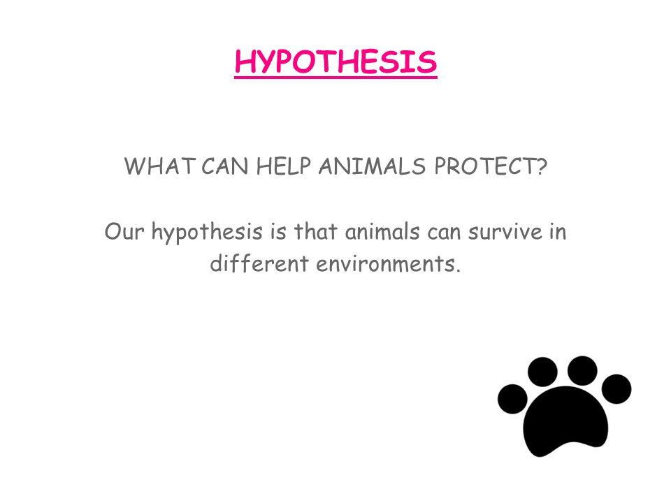 HYPOTHESIS WHAT CAN HELP ANIMALS PROTECT