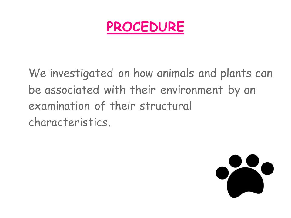 We investigated on how animals and plants can
